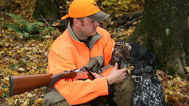Michigan Grouse Hunting Bird Hunting Waterfowl Hunting